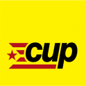 07.CUP